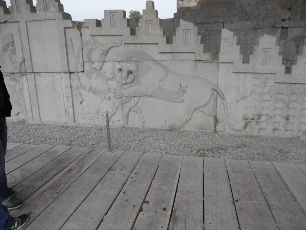lion devouring the bull (2)
